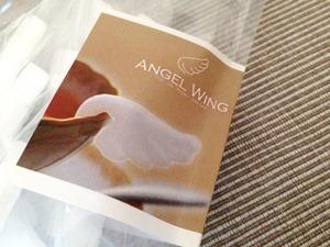 2015-03-02 angel-wing-sugar02.jpg